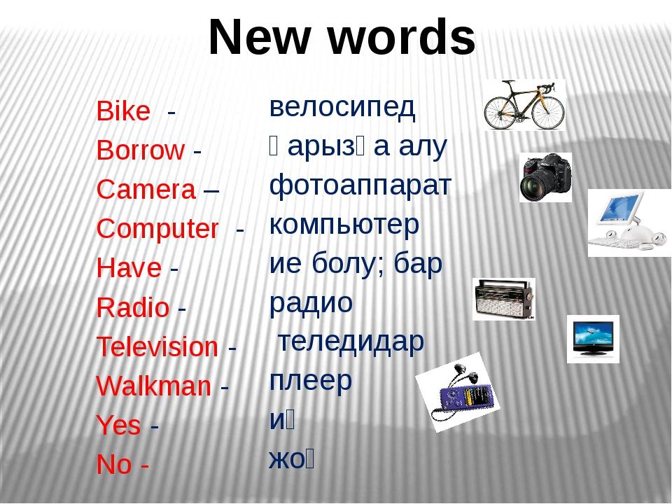 Bike - Borrow - Camera – Computer - Have - Radio - Television - Walkman - Ye...