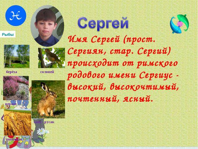 Имя Сергей (прост. Сергиян, стар. Сергий) происходит от римского родового име...