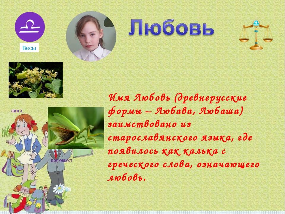Имя Любовь (древнерусские формы – Любава, Любаша) заимствовано из старославя...