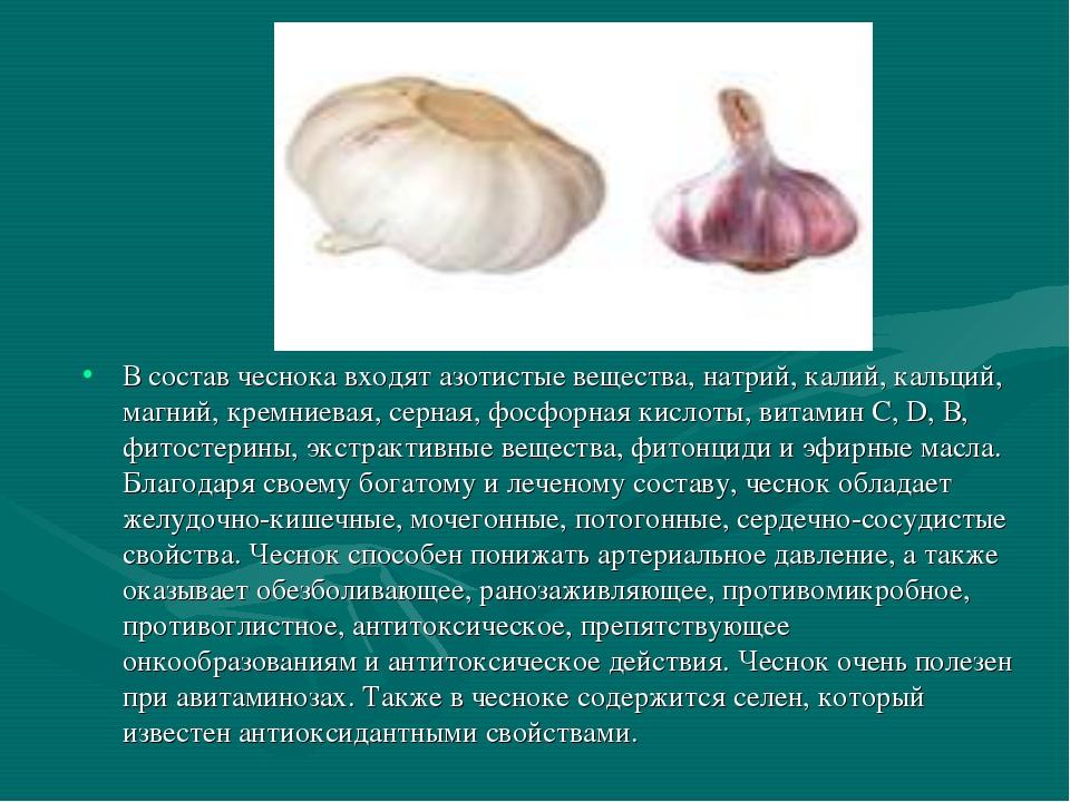 В состав чеснока входят азотистые вещества, натрий, калий, кальций, магний, к...