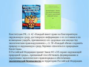 Конституция РФ, ст. 42 «Каждый имеет право на благоприятную окружающую среду