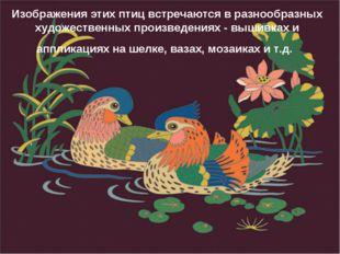 Изображения этих птиц встречаются в разнообразных художественных произведения