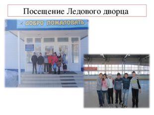 Посещение Ледового дворца