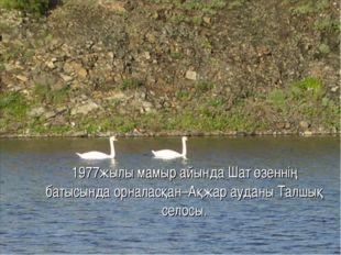 1977жылы мамыр айында Шат өзеннің батысында орналасқан–Ақжар ауданы Талшық с