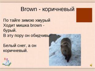 Brown - коричневый По тайге зимою хмурый Ходит мишка brown - бурый. В эту пор