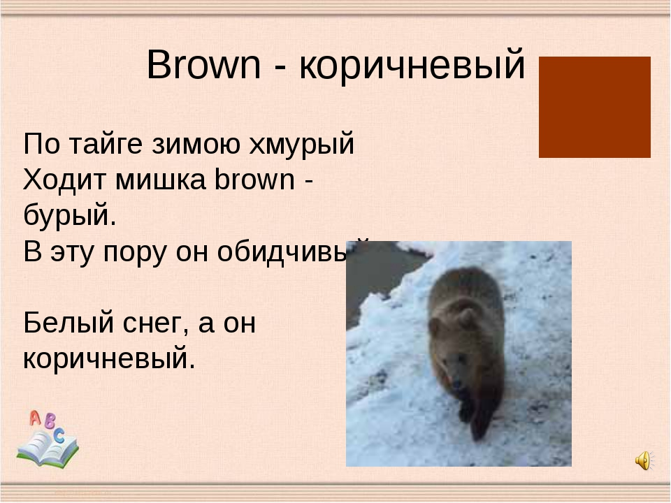 Brown - коричневый По тайге зимою хмурый Ходит мишка brown - бурый. В эту пор...