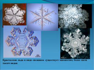 Кристаллов льда в виде снежинок существует множество, более пяти тысяч видов