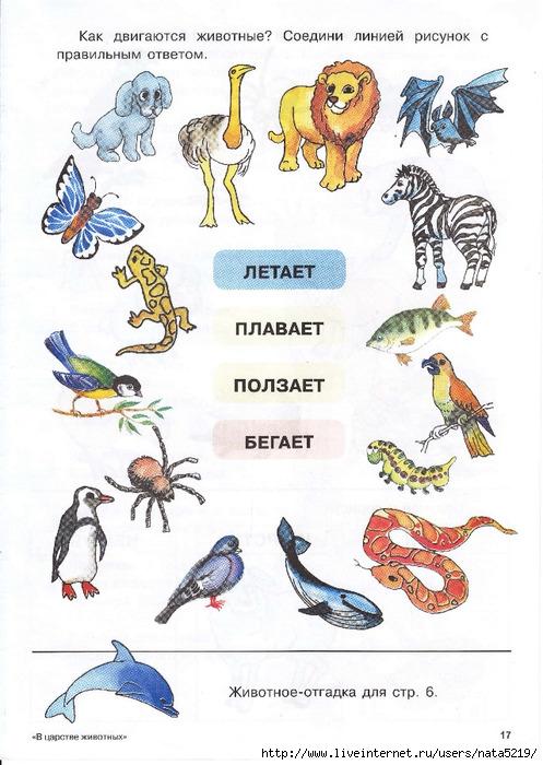 В царстве животных.Развивающие задания для детей 5-7 лет. Обсуждение на LiveInternet - Российский Сервис Онлайн-Дневников