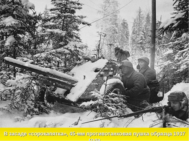 В засаде «сорокапятка», 45-мм противотанковая пушка образца 1937 года