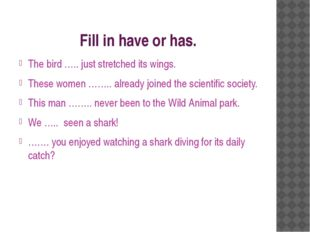 Fill in have or has. The bird ….. just stretched its wings. These women ……..