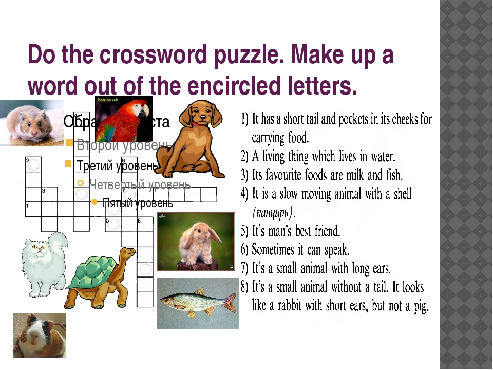 Do the crossword puzzle. Make up a word out of the encircled letters.