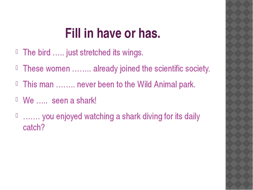 Fill in have or has. The bird ….. just stretched its wings. These women …….....