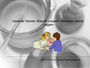 МБОУ СОШ № 20 с. Лувеньга Мурманской области Школьное Научное общество учащих