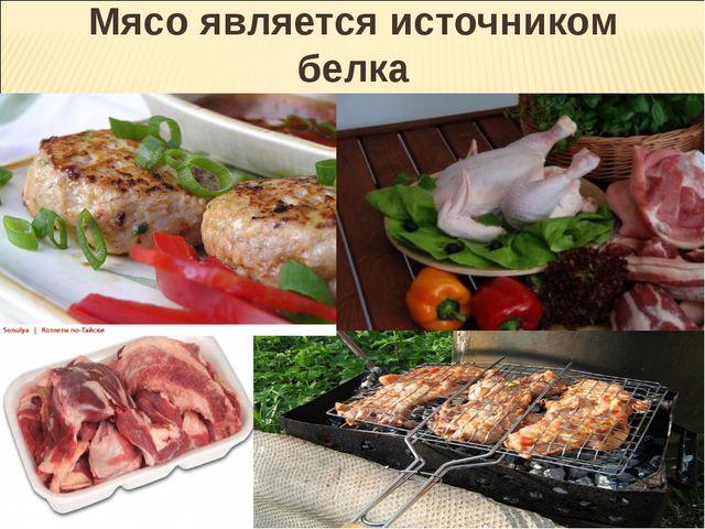 Мясо является источником белка