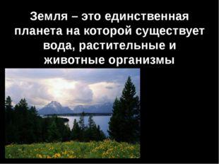 Земля – это единственная планета на которой существует вода, растительные и ж