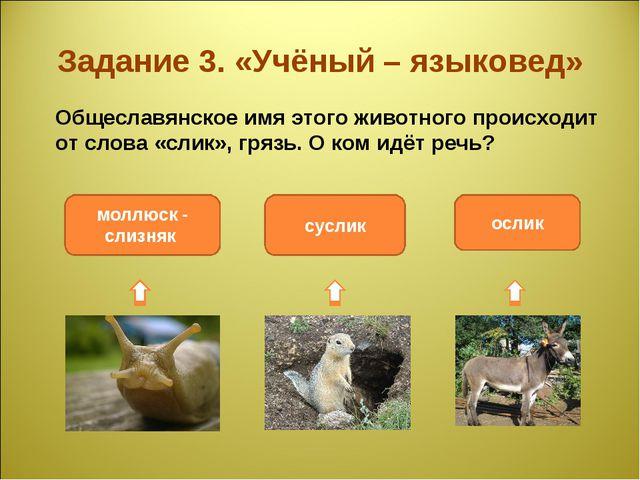 Задание 3. «Учёный – языковед» Общеславянское имя этого животного происходит...