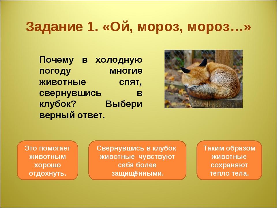 Задание 1. «Ой, мороз, мороз…» Почему в холодную погоду многие животные спят...