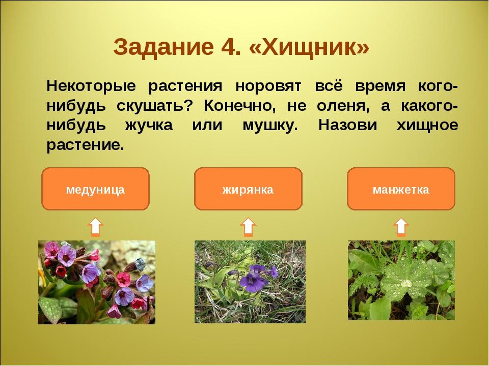 Задание 4. «Хищник» Некоторые растения норовят всё время кого-нибудь скушать...