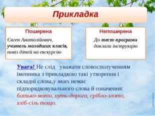 Прикладка Поширена Євген Анатолійович, учитель молодших класів, повіз дітей н