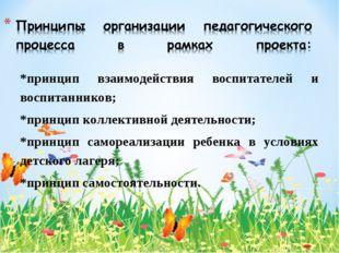 *принцип взаимодействия воспитателей и воспитанников; *принцип коллективной д