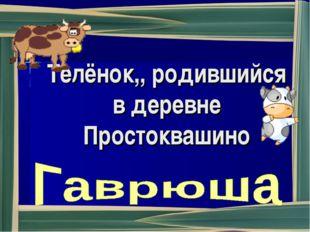 Телёнок,, родившийся в деревне Простоквашино