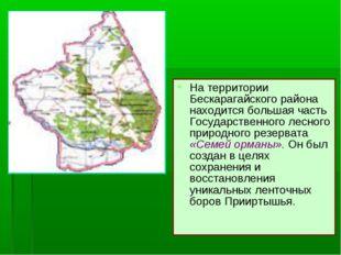 На территории Бескарагайского района находится большая часть Государственного