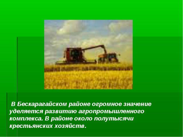В Бескарагайском районе огромное значение уделяется развитию агропромышленно...