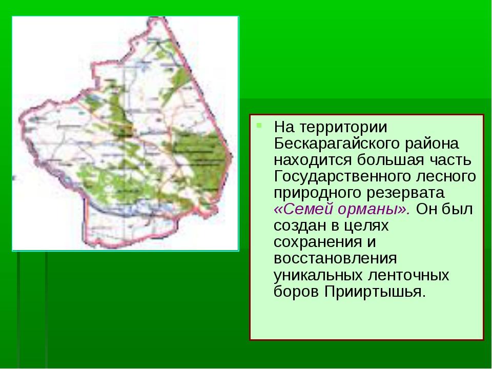 На территории Бескарагайского района находится большая часть Государственного...