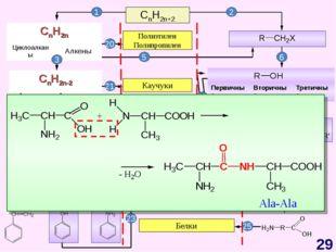 CnH2n+2 CnH2n-6 Арены, бензол Полиэтилен Полипропилен Каучуки Жиры Синтетичес