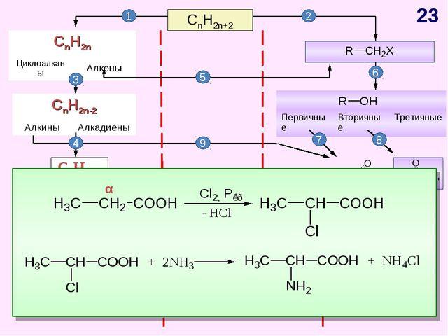 CnH2n+2 CnH2n-6 Арены, бензол 1 2 4 5 3 6 7 8 9 10 11 α * CnH2n Циклоалканы...