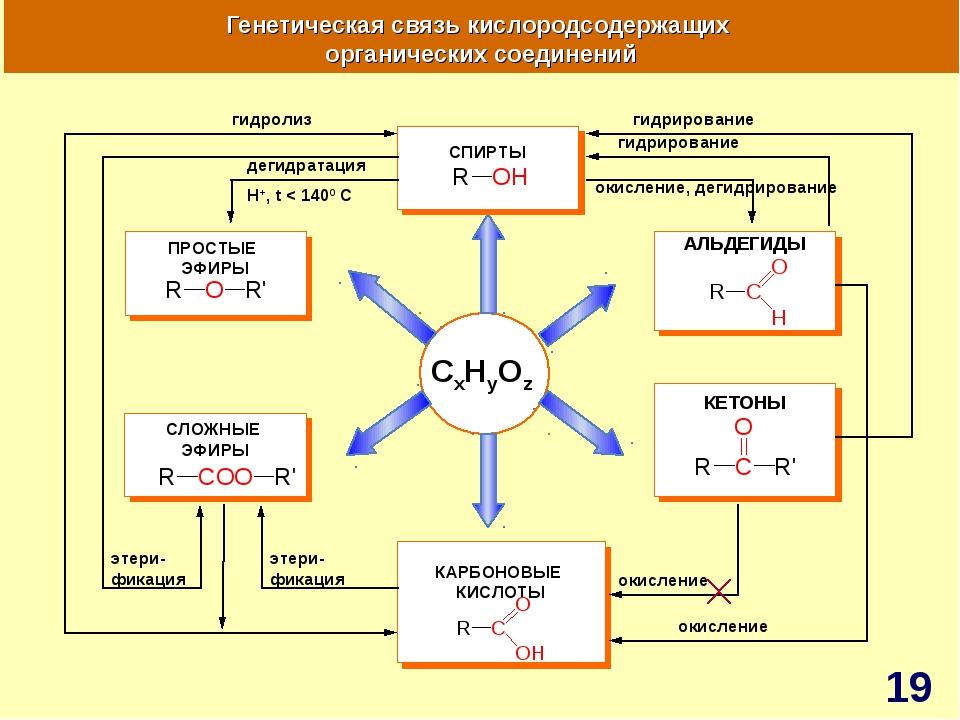 CxHyOz Генетическая связь кислородсодержащих органических соединений АЛЬДЕГИД...