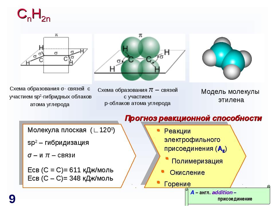 СnH2n Схема образования σ- связей с участием sp2-гибридных облаков атома угле...