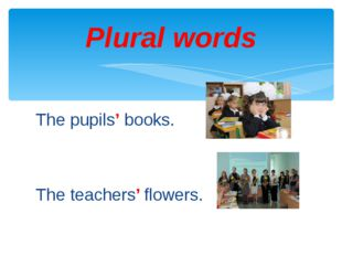 The pupils' books. The teachers' flowers. Plural words