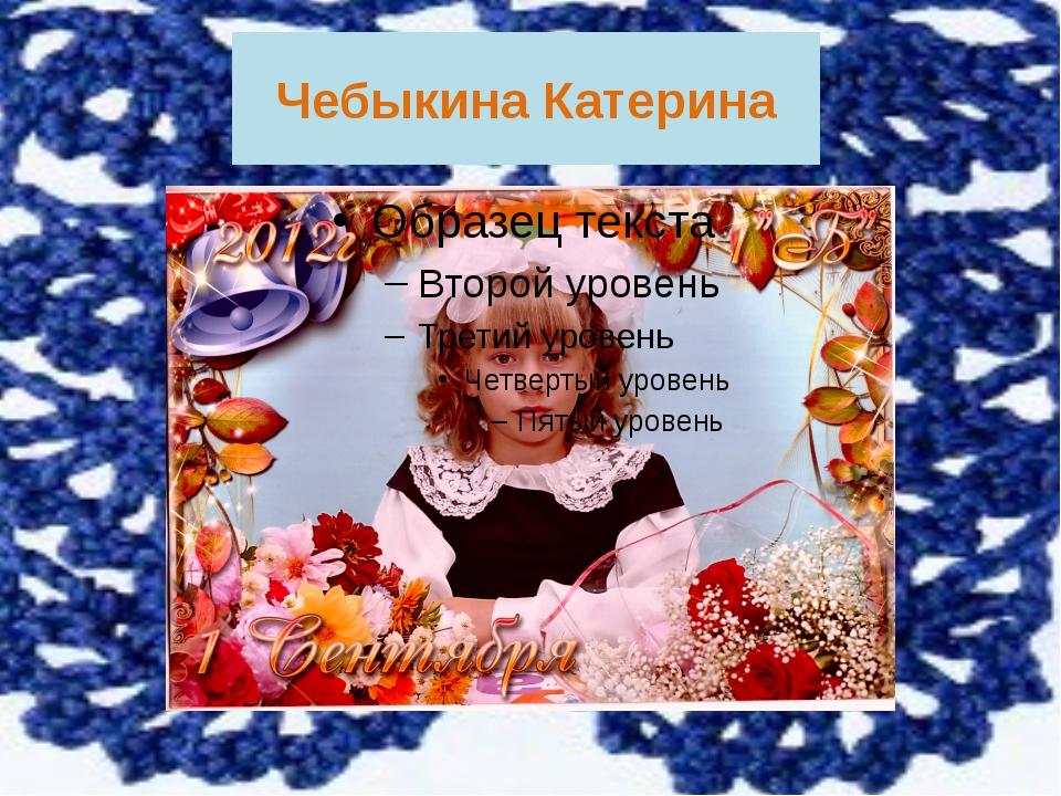 Чебыкина Катерина Меня зовут Чебыкина Катерина, я учусь в 3 б классе