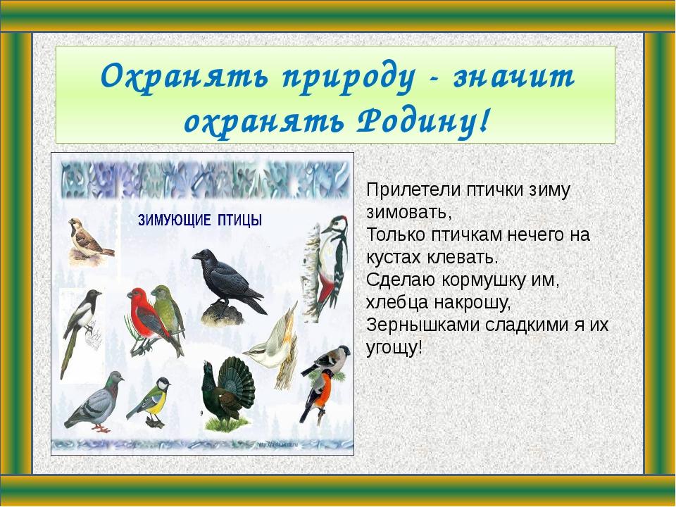 Охранять природу - значит охранять Родину! Прилетели птички зиму зимовать, Т...