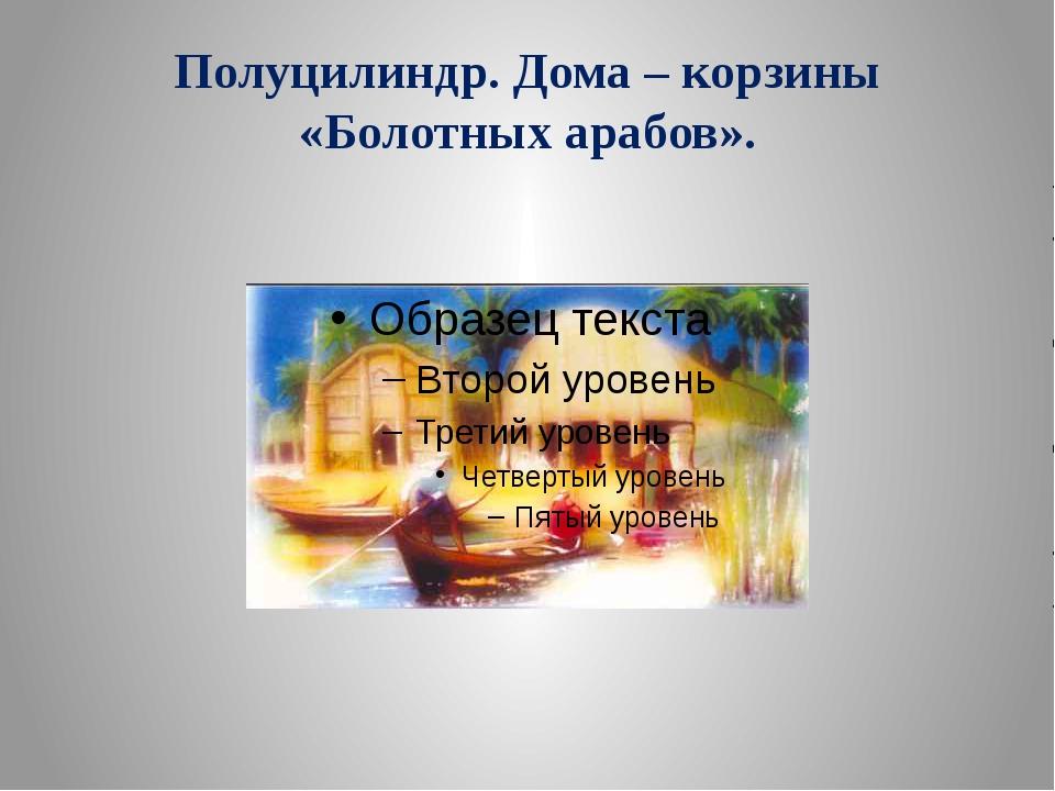 Полуцилиндр. Дома – корзины «Болотных арабов».