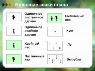 Условные знаки плана Одиночное лиственное дерево Одиночное хвойное дерево Хво