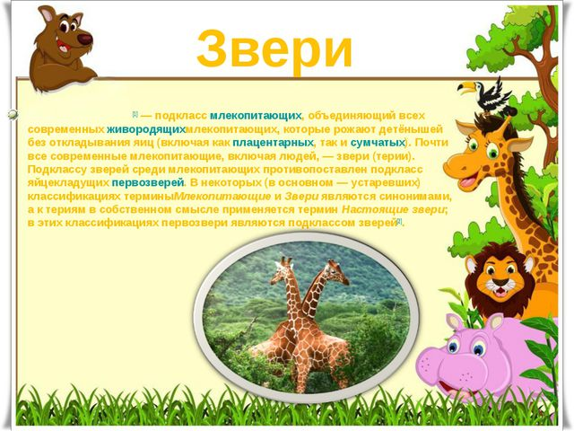 Звери Зве́ри, илите́рии[1]— подкласcмлекопитающих, объединяющий всех совре...