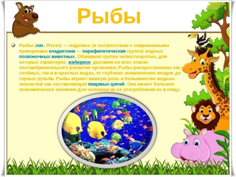 Рыбы Рыбы(лат.Pisces)— надкласс (в соответствии с современными принципами...