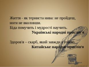 Життя - як терниста нива: не пройдеш, ноги не вколовши. Біда помучить і мудр