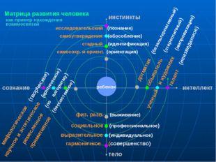 Матрица развития человека мифологическое (творческое) научное и эстетическое