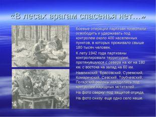 «В лесах врагам спасенья нет…» Боевые операции партизан позволили освободить