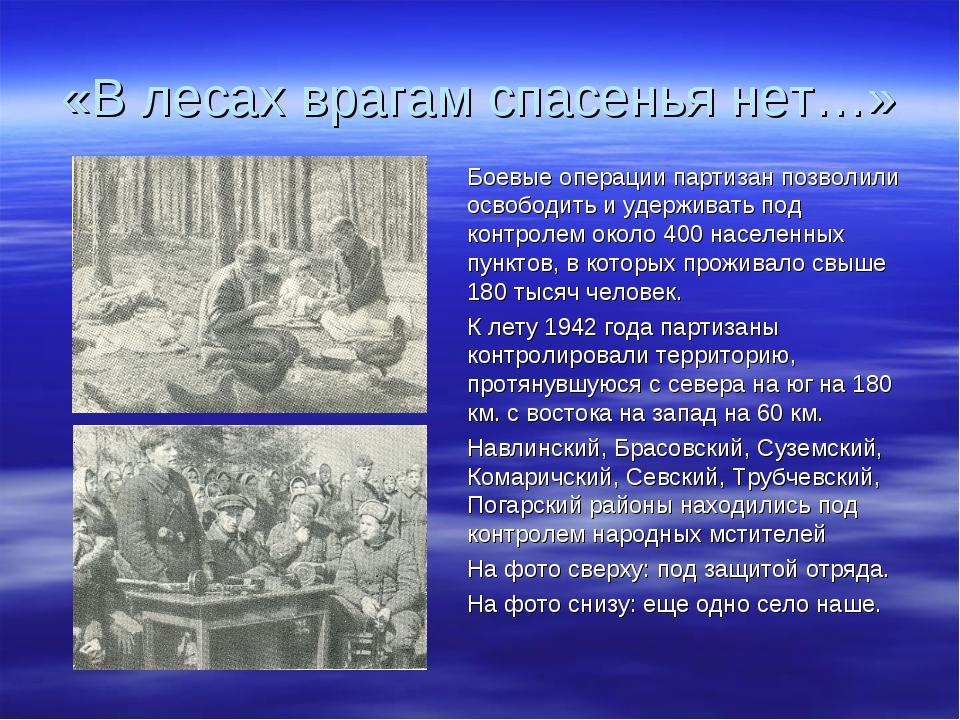 «В лесах врагам спасенья нет…» Боевые операции партизан позволили освободить...