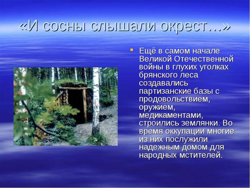 «И сосны слышали окрест…» Ещё в самом начале Великой Отечественной войны в гл...