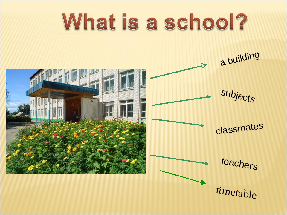 teachers a building subjects classmates timetable