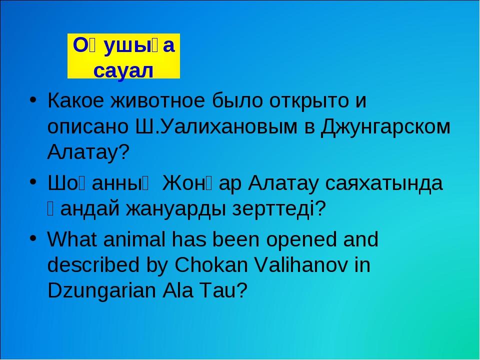 Какое животное было открыто и описано Ш.Уалихановым в Джунгарском Алатау? Шоқ...