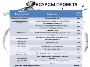 РЕСУРСЫ ПРОЕКТА Источник финансирования Содержание Сумма,руб Администрация ГБ