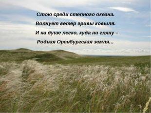 Стою среди степного океана. Волнует ветер гривы ковыля. И на душе легко, куда