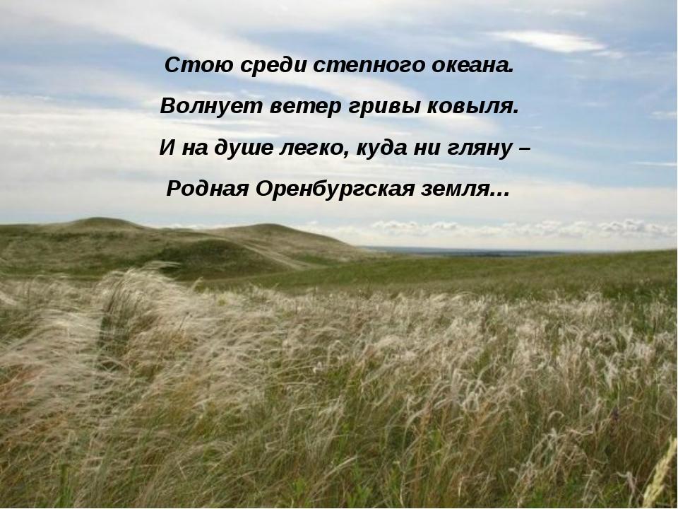 Стою среди степного океана. Волнует ветер гривы ковыля. И на душе легко, куда...