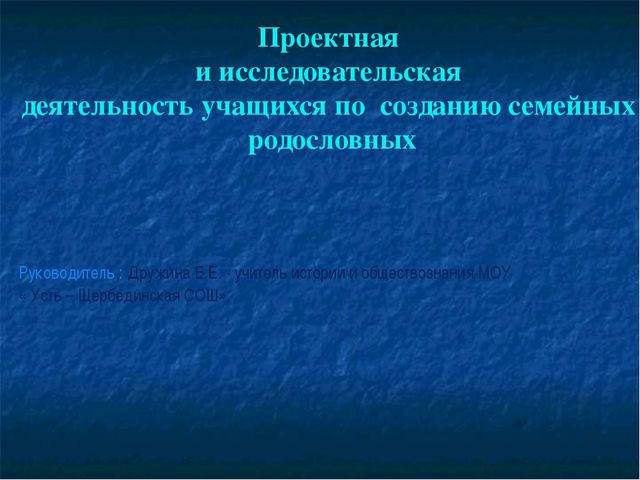 Руководитель : Дружина Е.Е. - учитель истории и обществознания МОУ « Усть – Щ...